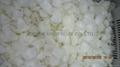 IQF onions,Frozen onions diced/cut/sliced 4