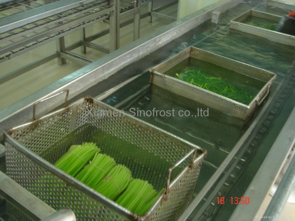 冷凍蒜苔,速凍蒜苔 5