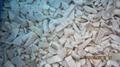 IQF Pleurotus Cubes,Frozen Pleurotus