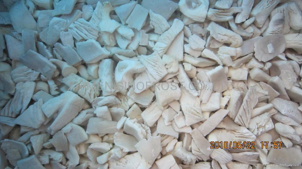 Frozen oyster mushrooms,IQF oyster mushrooms,sliced/cuts 2
