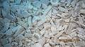 冷凍平菇,速凍平菇,條/塊 3