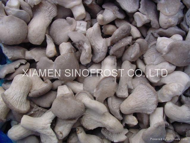 Frozen oyster mushrooms,IQF oyster mushrooms,sliced/cuts 3