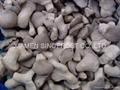 冷凍平菇,速凍平菇,條/塊 2