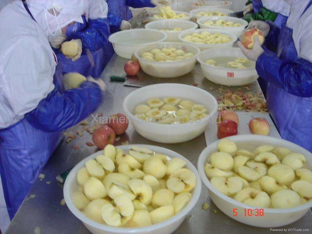 Frozen apples,IQF apples,diced/segments/ha  es 4
