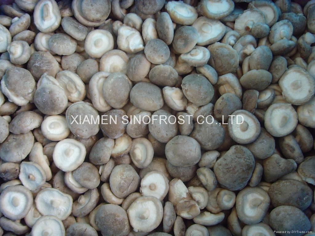冷凍香菇,速凍香菇 6