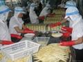 蘑菇罐頭,麻筍罐頭,馬蹄罐頭,蘆筍罐頭,蜜桔罐頭,黃桃罐頭 4