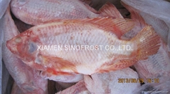 Frozen Tilapia Fillets,F
