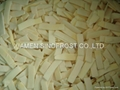 New crop IQF bamboo shoots slices/strips/cuts