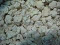 IQF cauliflowers florets,Frozen cauliflowers florets 6
