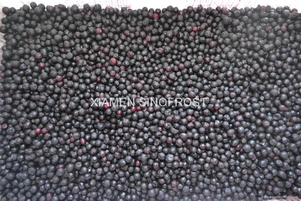 冷凍藍莓,速凍藍莓 5
