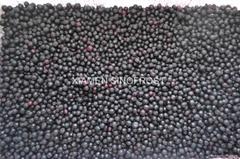冷凍藍莓,速凍藍莓