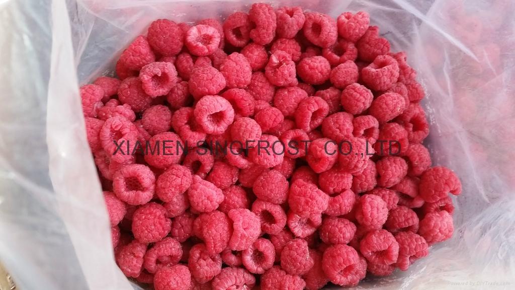 冷凍樹莓,速凍樹莓 11