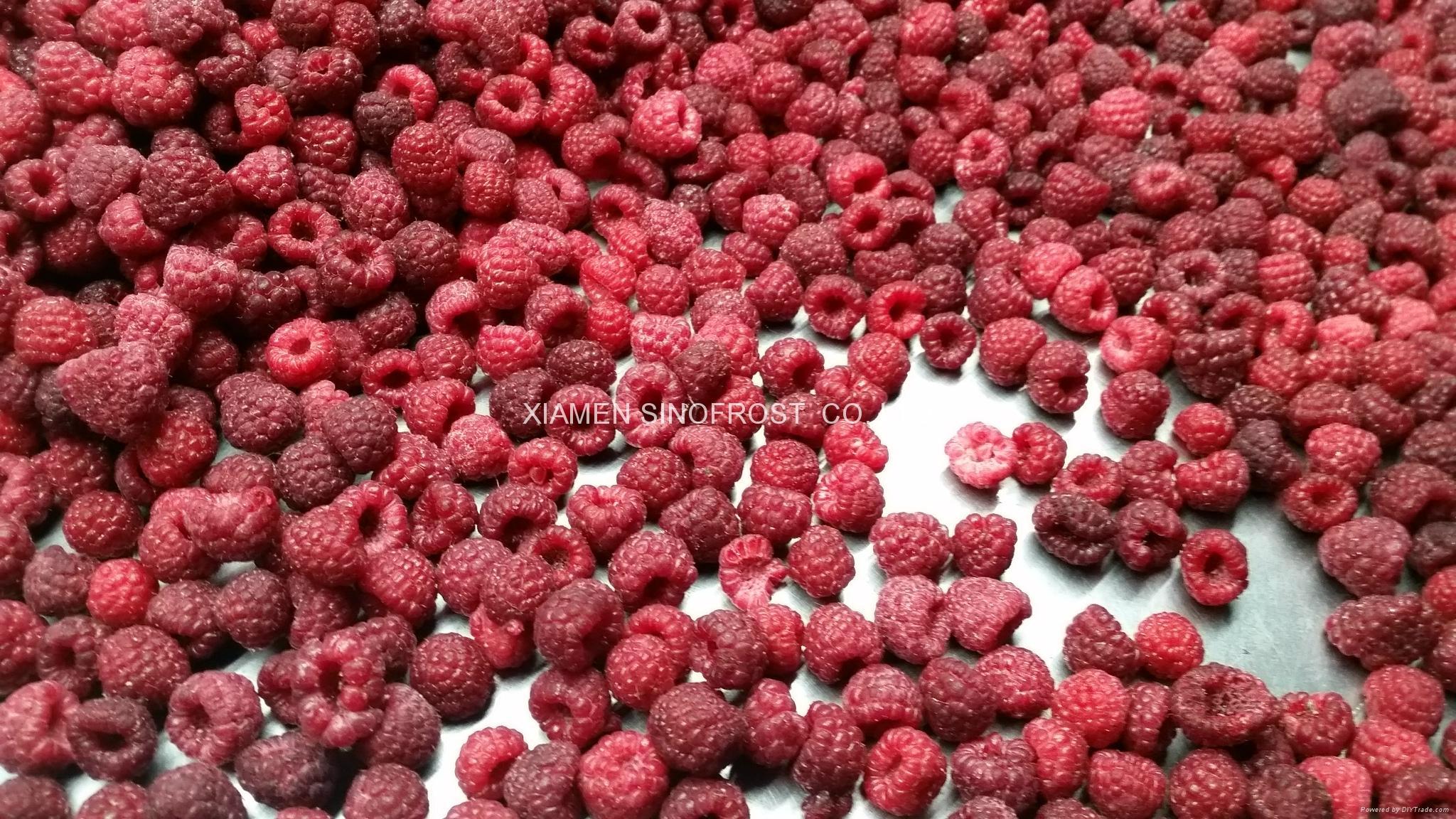 冷凍樹莓,速凍樹莓 8