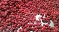 IQF raspberries,Frozen raspberries
