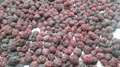 2017 crop IQF cultivated blackberries