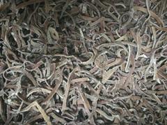 IQF black fungus,Frozen black fungus,strips/cuts