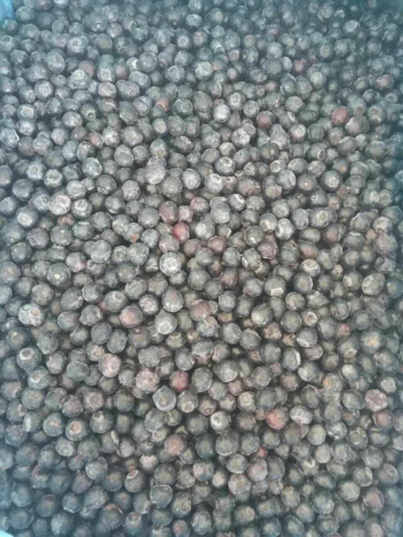 IQF Blueberries,  Frozen Blueberries,IQF Bilberry,Frozen Bilberries 6