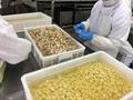 冷凍蒜瓣,冷凍蒜丁,冷凍蒜泥 9