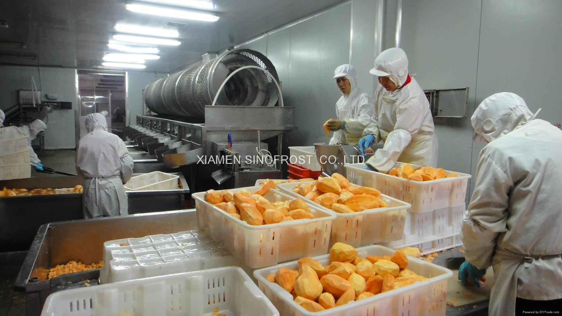 IQF Sweet Potato Dices,Frozen Sweet Potato Dices,IQF Cut Sweet Potato 14