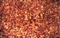冷凍紅椒,速凍紅椒,絲/丁 11