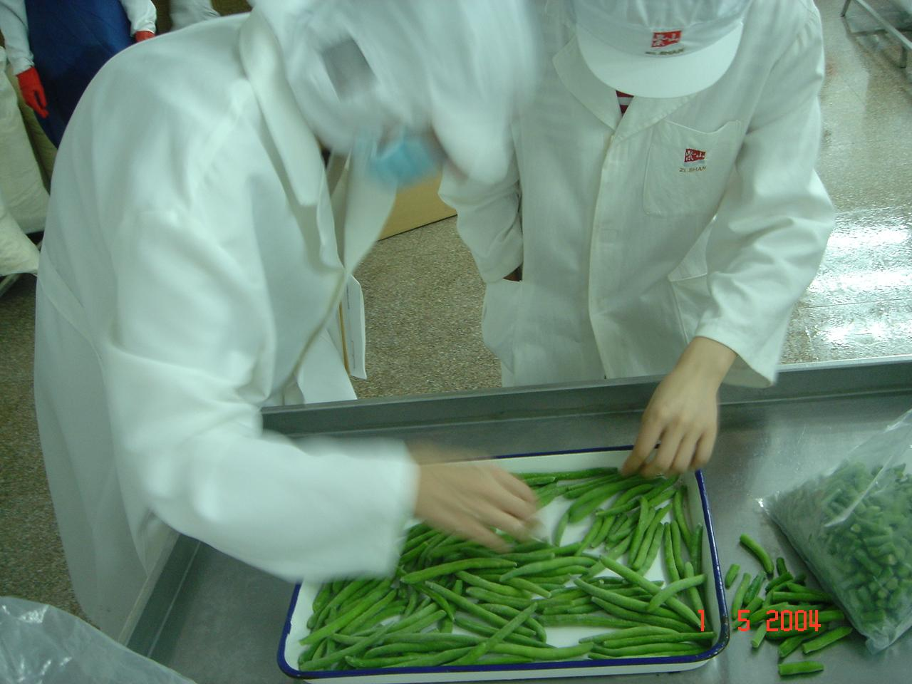 IQF Whole Green Beans ,Frozen Green Beans Wholes,IQF cut green beans 8