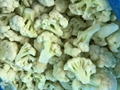 IQF cauliflowers nuggets,Frozen cauliflowers nuggets
