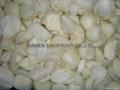 Frozen Roasted Onions, Frozen Fried Onion Puree, Frozen Grilled Onions