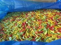 IQF mixed sweet peppers,Frozen mixed sweet peppers (dices/strips)