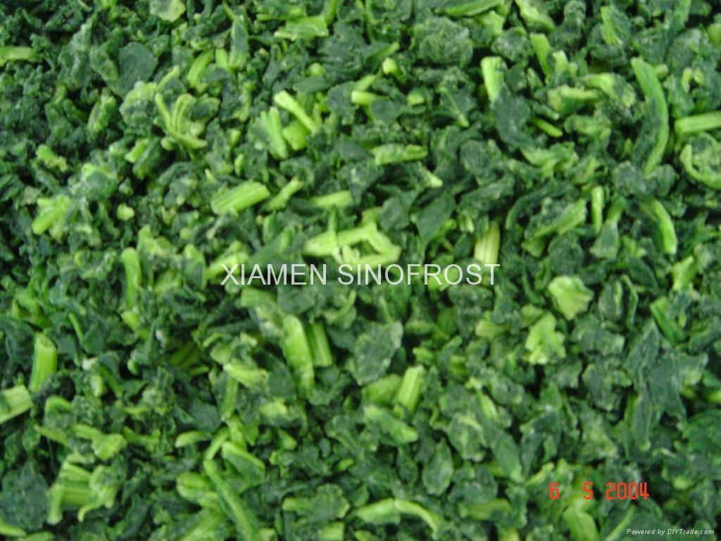 IQF Chopped Spinach,IQF Spinach Cut,BQF Cut Spinach,Frozen Chopped Spinach 8