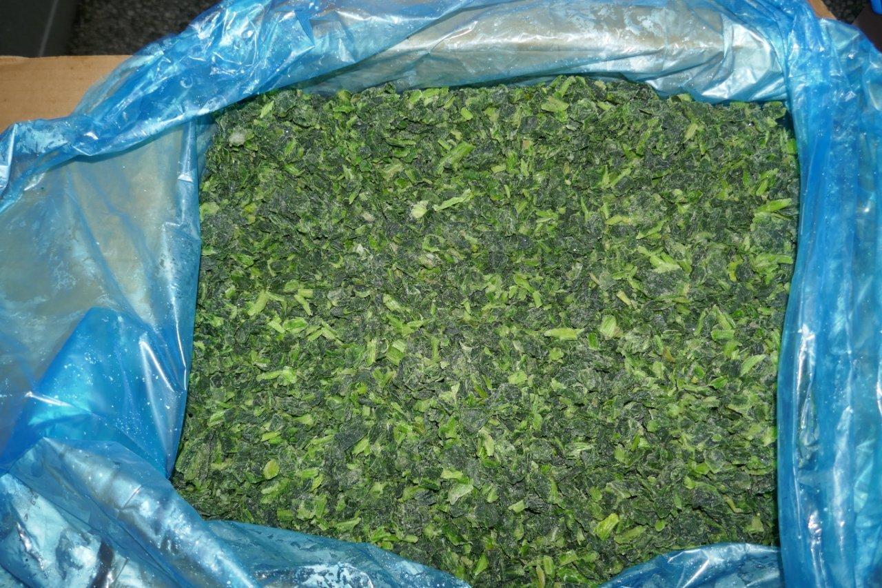 IQF Chopped Spinach,IQF Spinach Cut,BQF Cut Spinach,Frozen Chopped Spinach 15