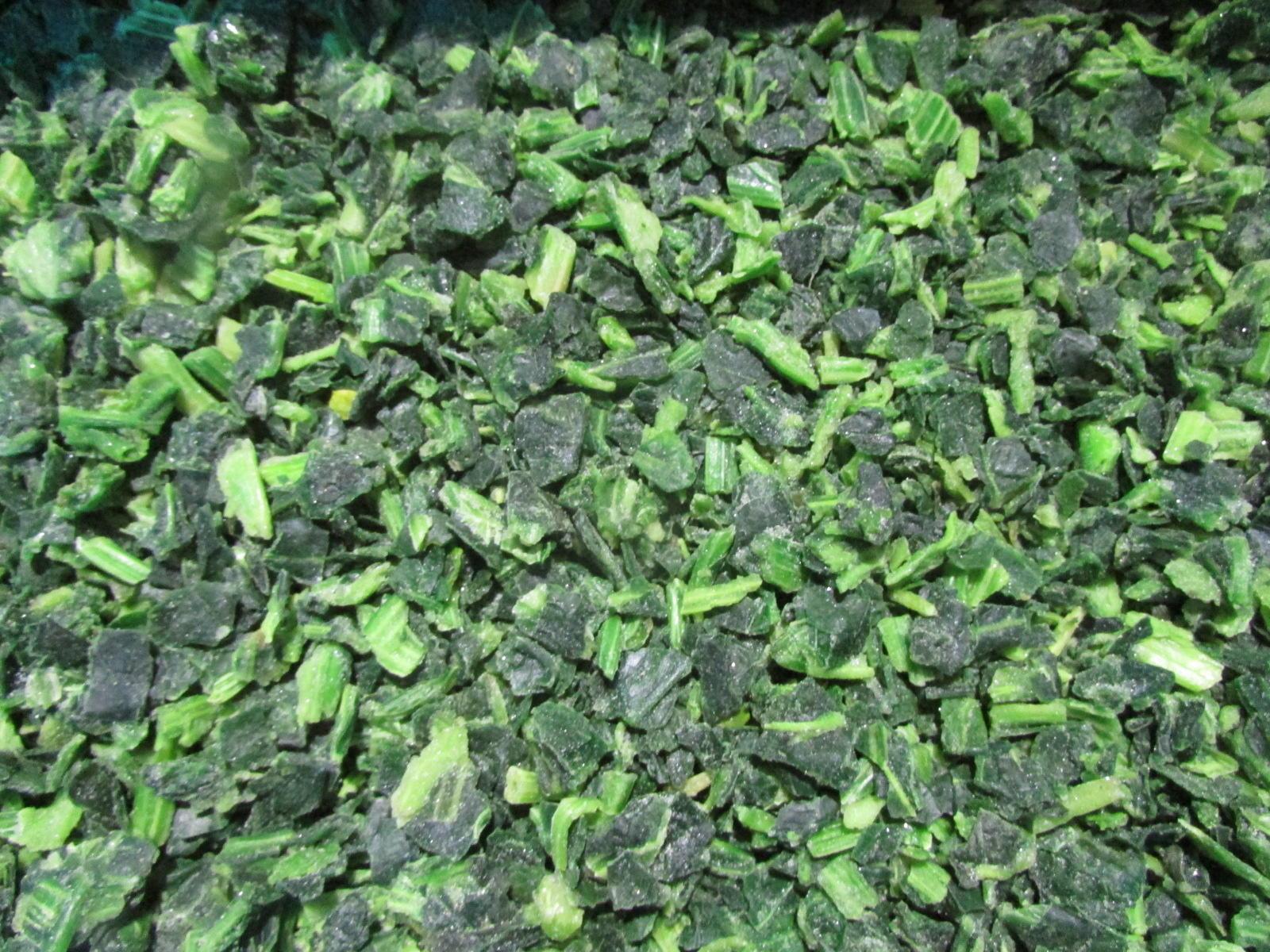 IQF Chopped Spinach,IQF Spinach Cut,BQF Cut Spinach,Frozen Chopped Spinach 11