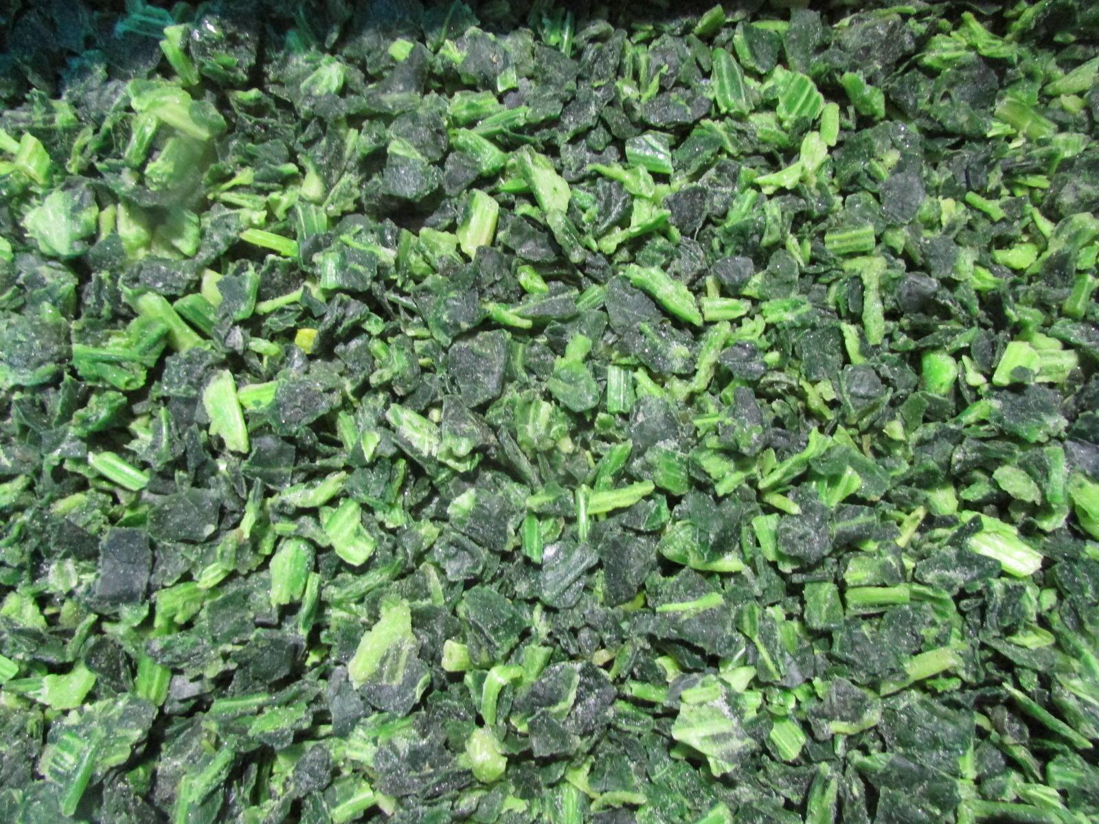 IQF Chopped Spinach,IQF Spinach Cut,BQF Cut Spinach,Frozen Chopped Spinach 9
