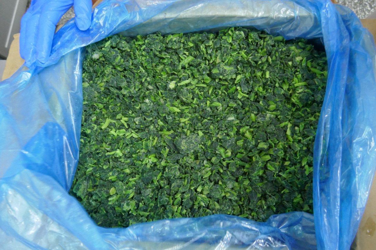 IQF Chopped Spinach,IQF Spinach Cut,BQF Cut Spinach,Frozen Chopped Spinach 17