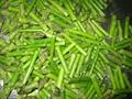 冷凍綠蘆筍尖段,速凍綠蘆筍尖段 11