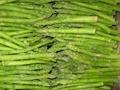 冷凍綠蘆筍,速凍綠蘆筍,冷凍蘆