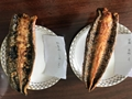 Frozen Roasted Eel Sushi Slices,Unagi Kabayaki Sushi Slices