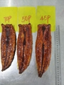 Frozen Roasted Eel ,Unagi Kabayaki ,Frozen Prepared Eel