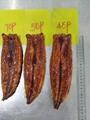Unagi Kabayaki,Frozen Roasted Eel,Frozen Prepared Eel