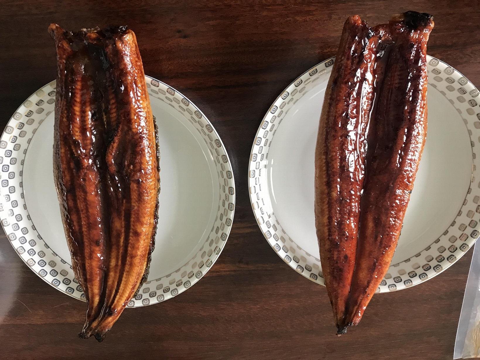 IVP Packed, Frozen Roasted Eel,Frozen Grilled Eel,Unagi Kabayaki in vacuum bag 6