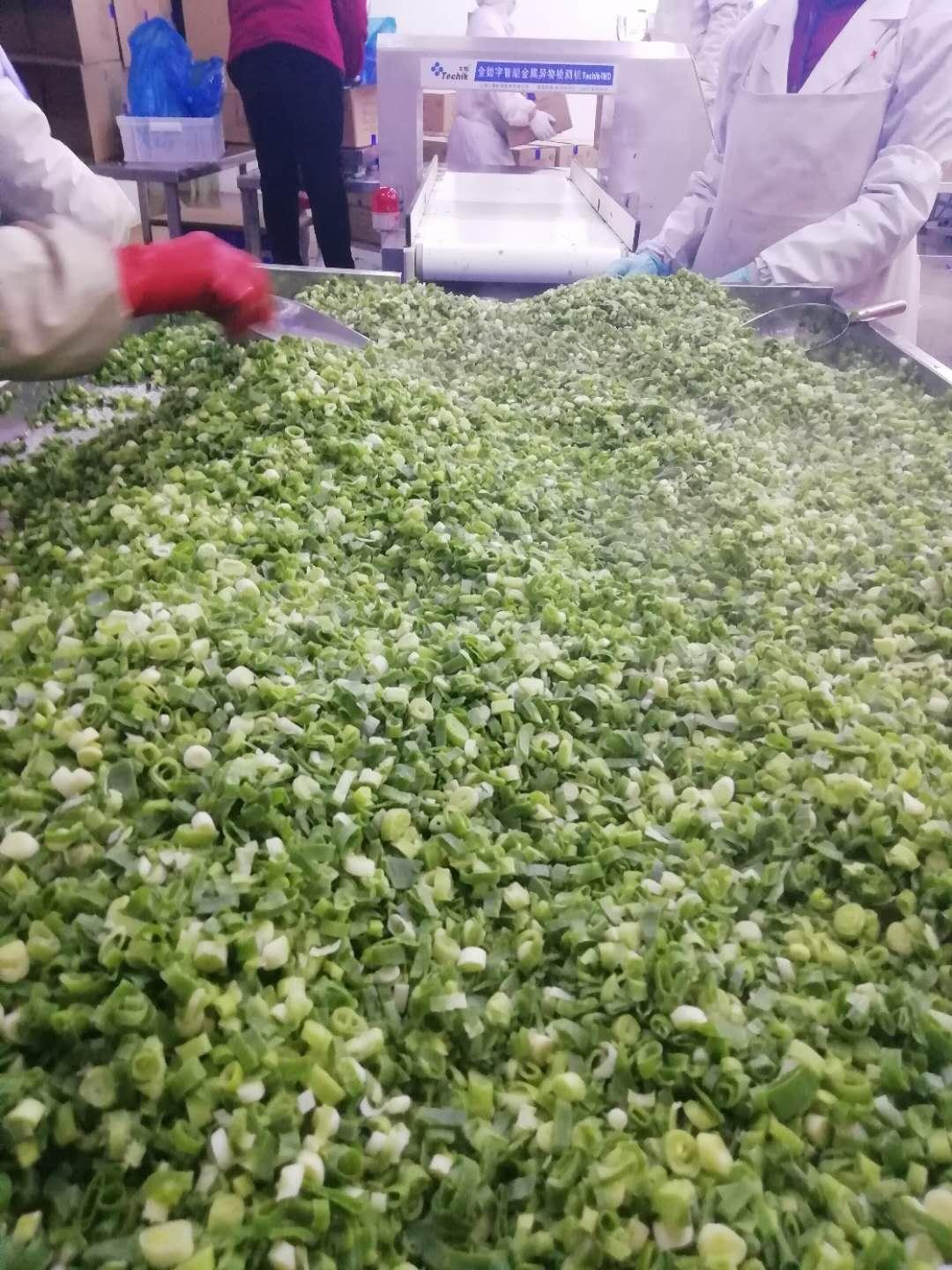 IQF spring onions ,IQF green onions,IQF welsh onions(dices/cuts/slices/chopped) 10