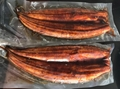No MSG Frozen Roasted Eel, Frozen BBQ