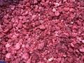 IQF Raspberries Brokens,Frozen