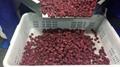 IQF Raspberries Brokens,Frozen Raspberries Brokens,red,cultivated