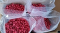 IQF raspberries crumbles,Frozen raspberry crumbles,red,cultivated