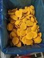 IQF diced mango,Frozen mango dices,IQF mango chunks,IQF mango pieces