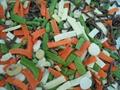 冷凍混合蔬菜,速凍混合蔬菜 10