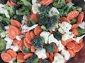 冷凍混合蔬菜,速凍混合蔬菜 17