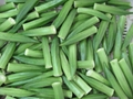 IQF Okra slices,IQF sliced Okra,Frozen sliced Okra,Frozen Okra slices
