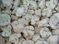 new  crop IQF broccoli ,IQF cauliflowers