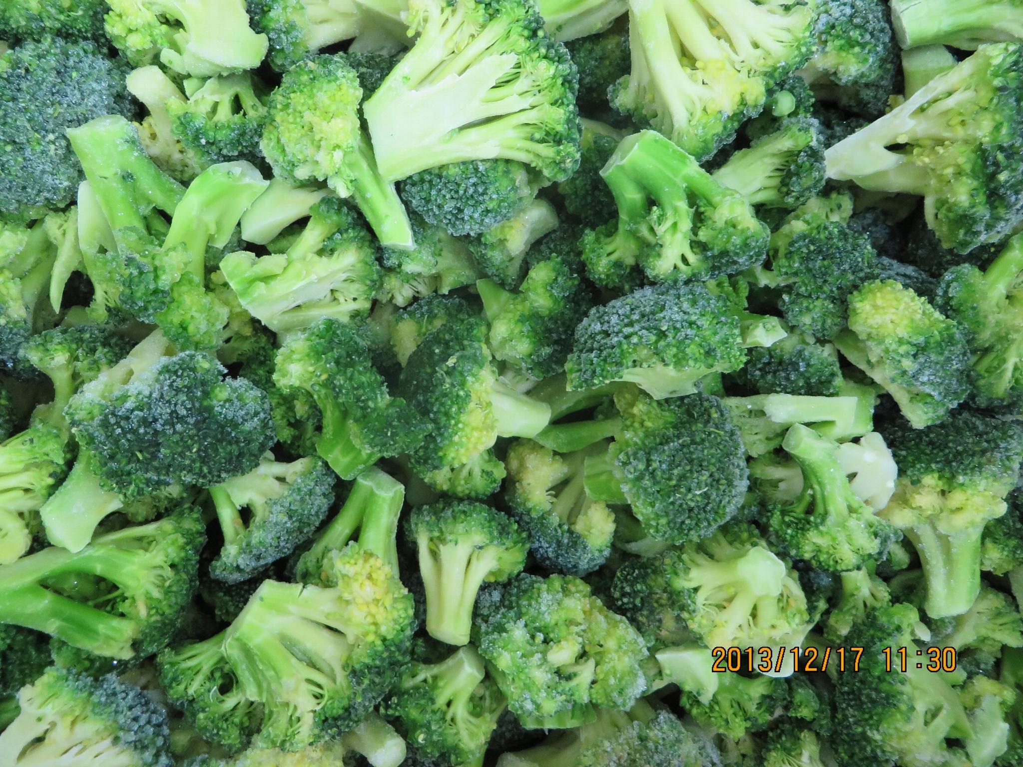IQF Cut broccoli,Frozen Cut Broccoli,BQF broccoli spears